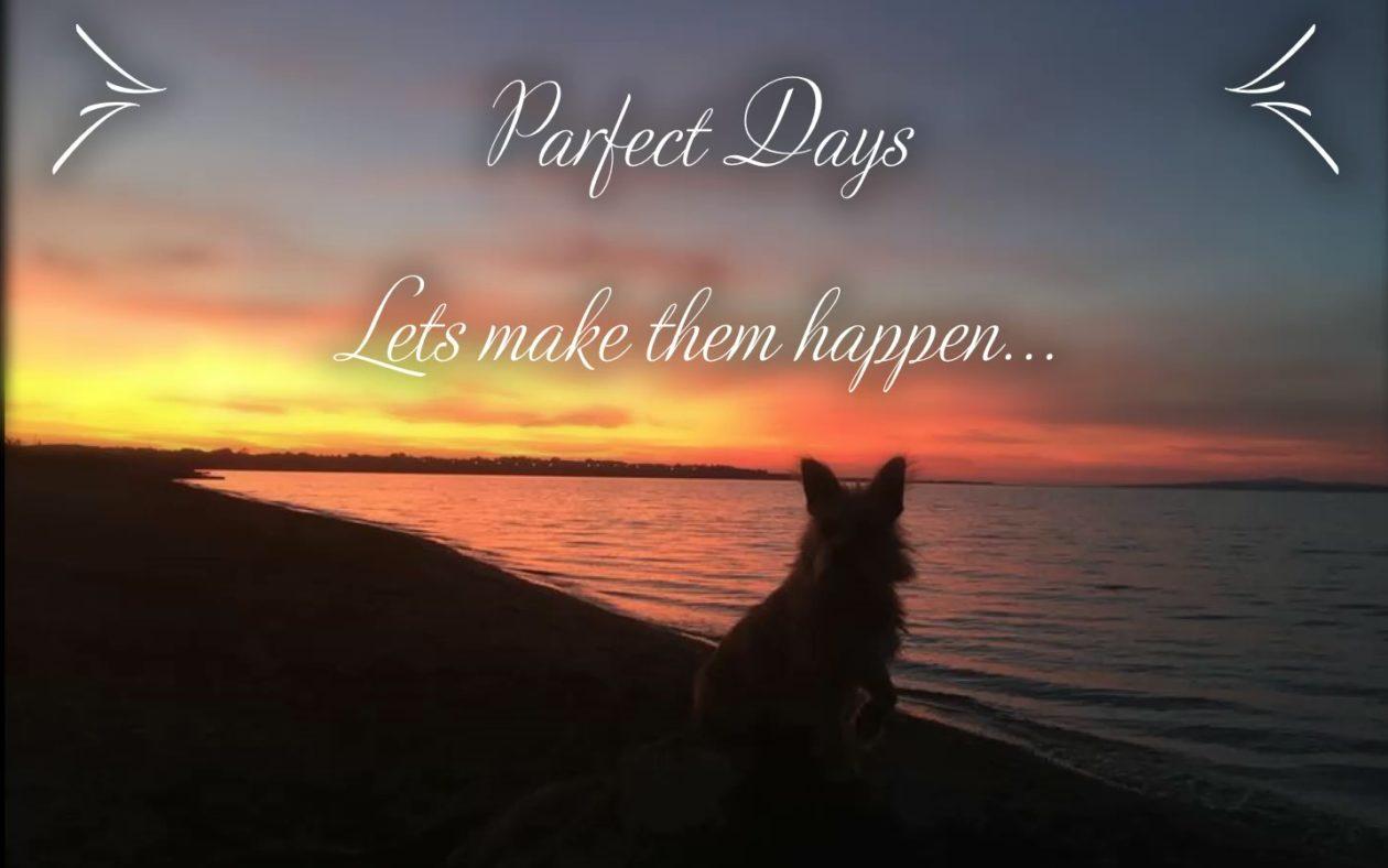 Parfect Days